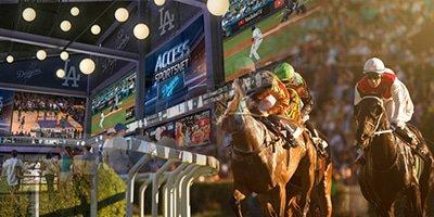 esports casino betting canada